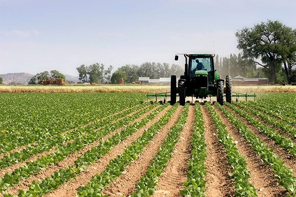 CBN orders increased lending to Agricultural sector