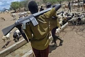 Suspected herdsmen raze Dagiyo Village, kill locals