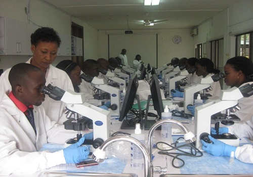 Medical Lab scientists unhappy with doctors' 'overbearing postures'