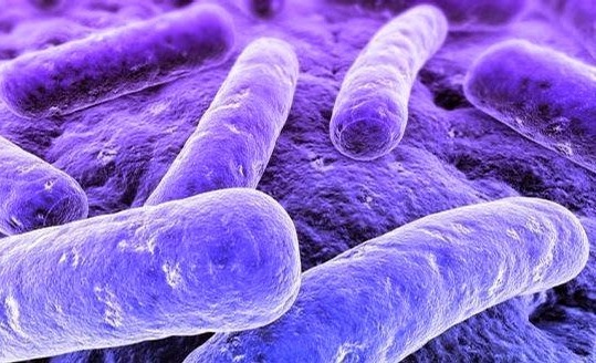 Health experts say emerging sex disease could become next superbug