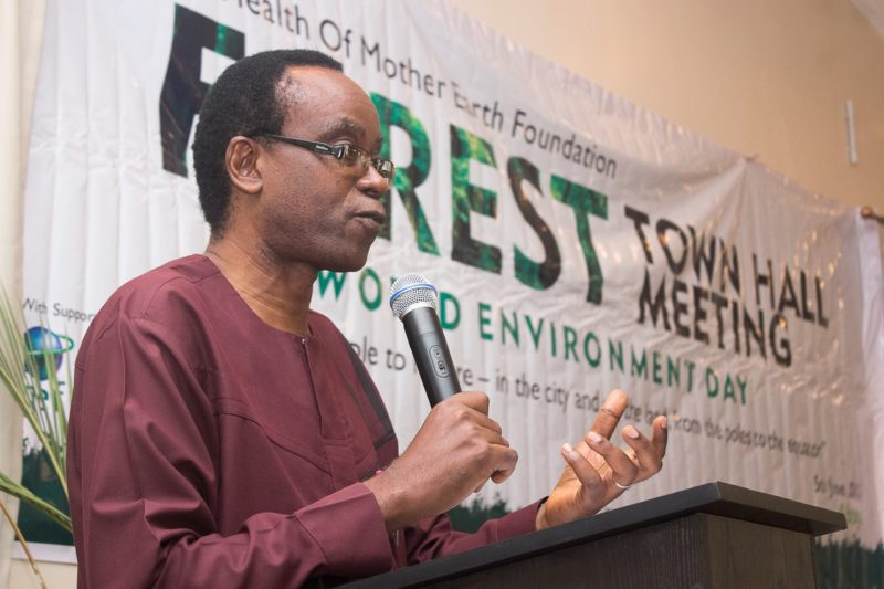 Militarisation not needed in Niger Delta if there's justice – Nnimmo Bassey