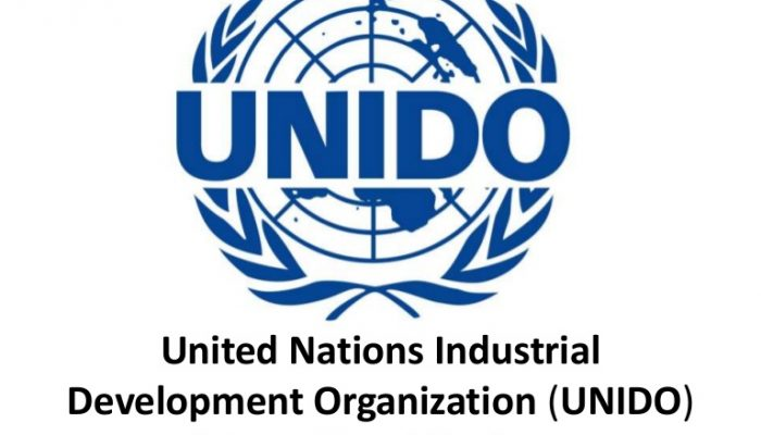Nigeria to partner Japan, UNIDO to boost growth