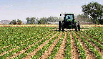 Stakeholders urge FG to invest Agric genetic research