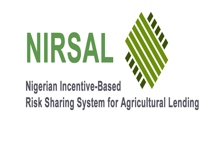 NIRSAL expects $4.4bn revenue from exports in 2018
