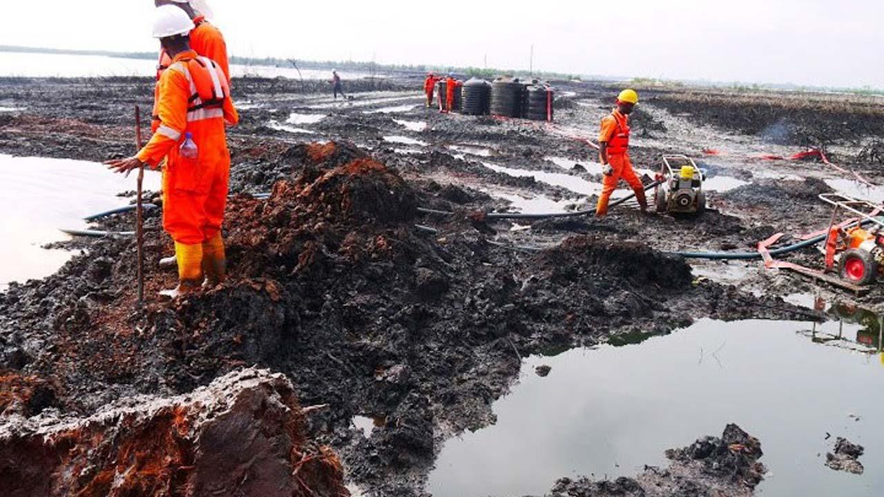Environmental activists decry slow progress of Ogoni cleanup