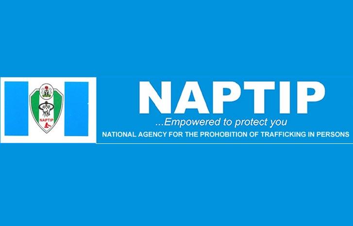 NAPTIP to establish sexual offenders' register –  D-G
