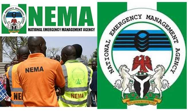 NEMA calls for effective partnership in fighting disasters