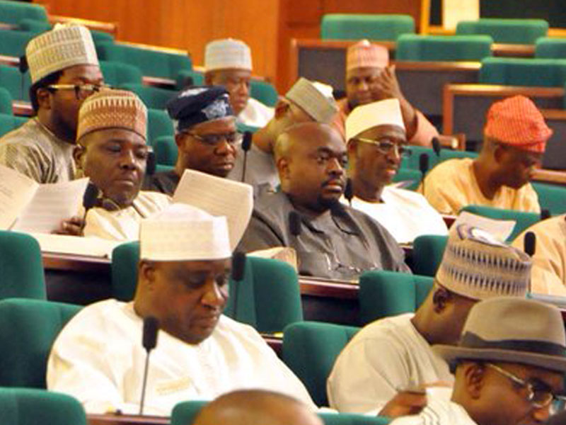 NASS meets with executives to discuss national issues