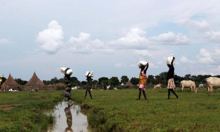 South Sudan violence blocking food aid – WFP