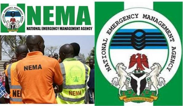 Disaster Management: NEMA partners key players in Gombe