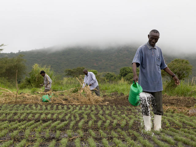 Agriculture Development: Experts charge African Leaders to create viable policies