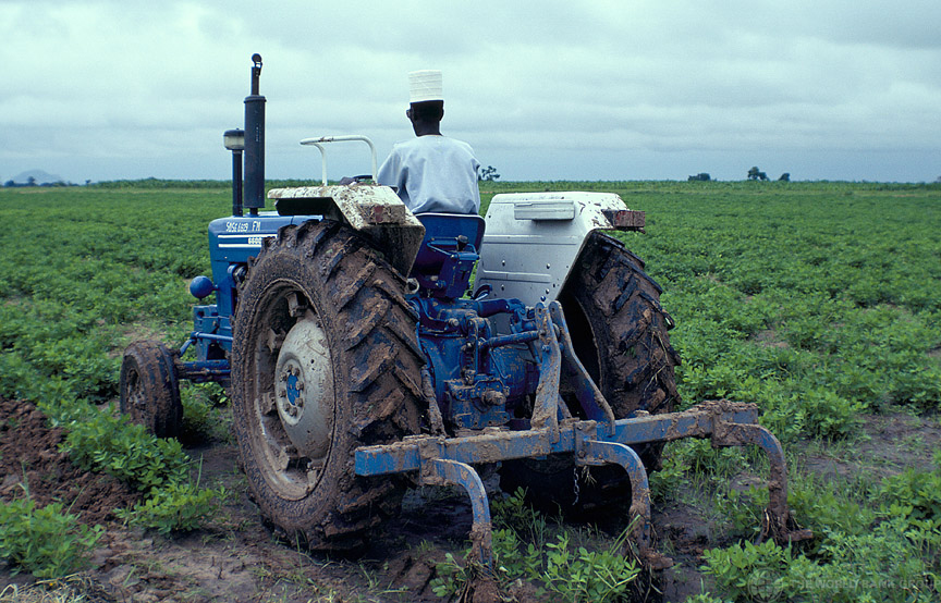 Nigeria's agriculture sector loses N0bn annually