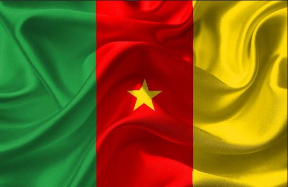 Cameroon court rejects all petitions calling for re-run of elections