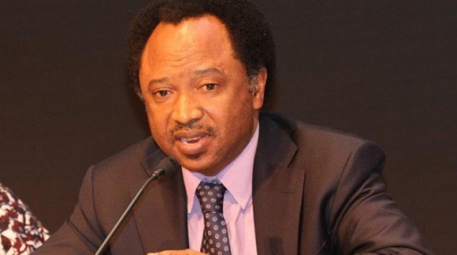BREAKING: At last, Senator Shehu Sani quits APC