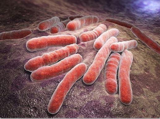 18 Nigerians die of Tuberculosis hourly – NTBLCP