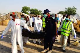 Updated: Death toll in B'Haram attack on Borno communities rises to 14