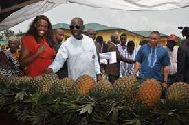 Edo state Gov. inaugurates food & agric cluster, skills centre
