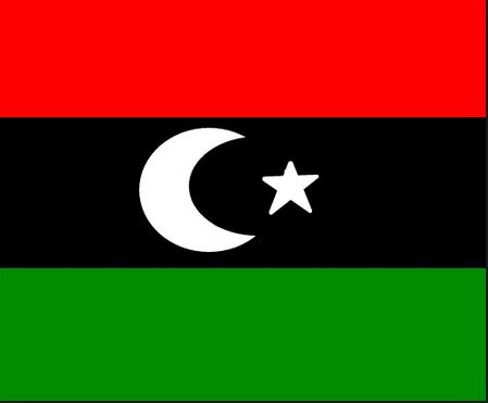 Libya could hold elections next year – Italy's foreign minister