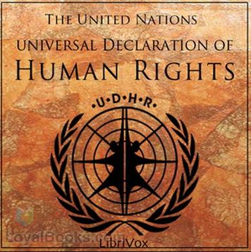 United Nations' universal declaration of human rights (SEE list of articles)
