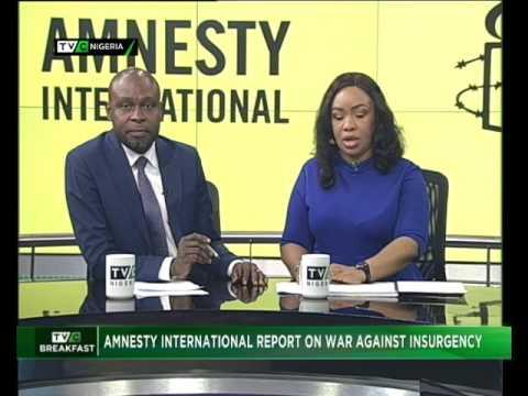 Amnesty International Report on Fight Against Insurgency