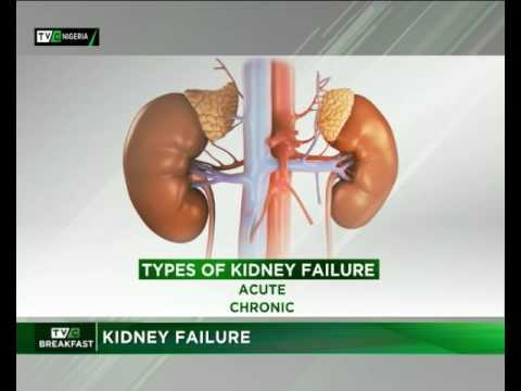 Renal Failure Part 2