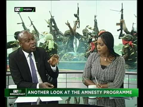 Another look at the Amnesty Programme