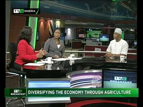 DIVERSIFYING NIGERIA'S ECONOMY