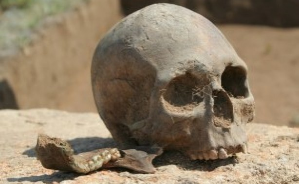 Police arrest man with human skull in Abuja