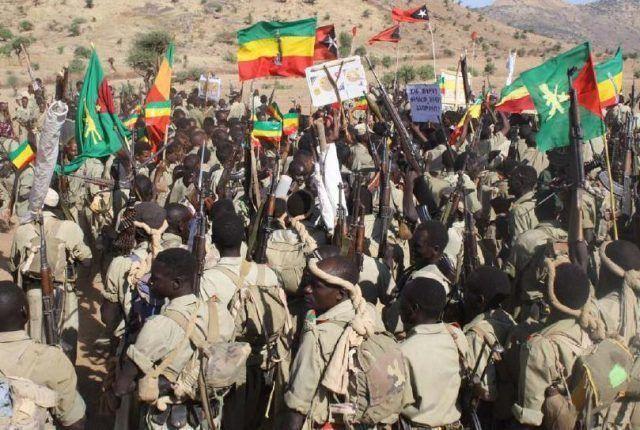 Ethiopia: Security operatives arrest more than 200 militia recruits
