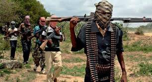 Boko Haram kills family of five in Yobe, locals flee to safety