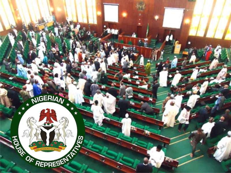 Members of House of Reps order 400 exotic cars, reject Nigerian ...