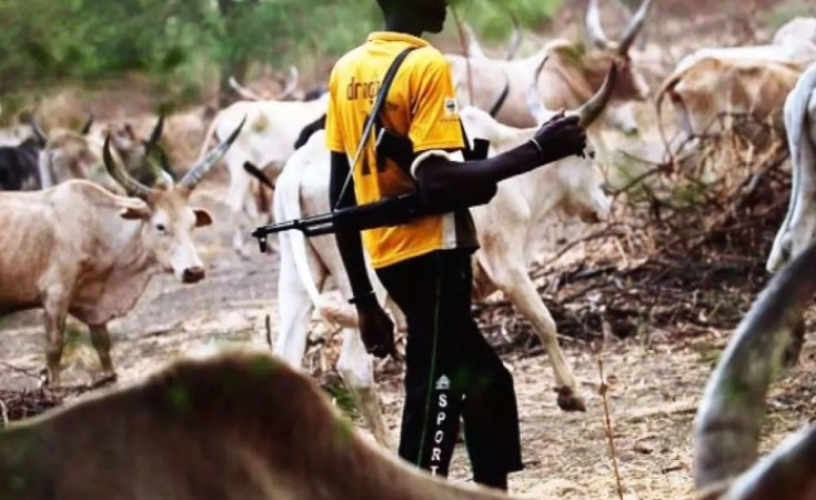 Nigeria: Herdsmen Kill Two Village Heads in Adamawa - allAfrica.com